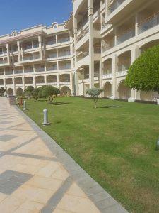 White beach hotel Hurgada Egiptas atsiliepimai
