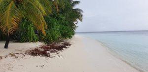 Apie Maldyvus ir Šri Lanką