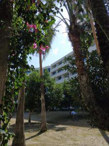 Mirage resort kambariai