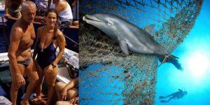 Įtalų naras Enzo Mallorca išgelbėjo neščią delfinę ir…